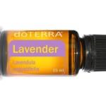 Olejek Lawendowy – Lavender – dōTERRA