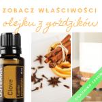 Olejek Z Goździka – Właściwości – Jak Stosować ?