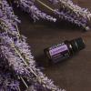 Olejek dōTERRA   Lavender   Olejek Lawendowy – 15 ml