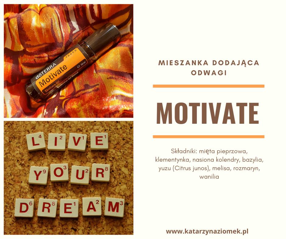 miesznaka dodająca odwagi motivate